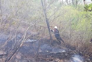 남부지방산림청, 울진군 매화면 갈면리 산불 진화