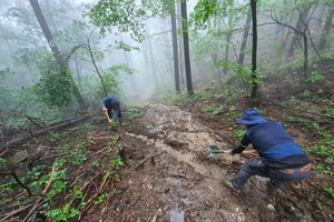집중호우 대비 숲가꾸기사업장 일제점검